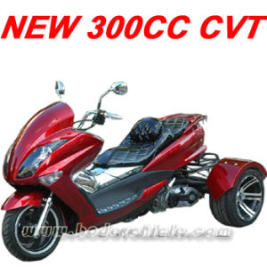 2014 New 300cc CVT ATV pictures & photos