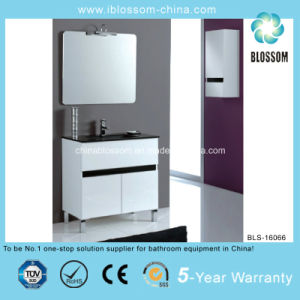 Wall Mounted and Floor Mounted Bathroom Cabinet (BLS-16066) pictures & photos