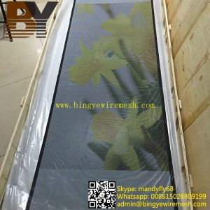 Powder Coated Security Screen Door Mesh pictures & photos
