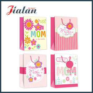 Die Cut Handle with Magnet Paper Bag with Ribbon Bow pictures & photos