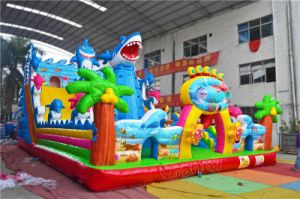Ocean Theme Inflatable Funcity Chob400 pictures & photos