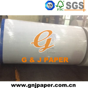 Grade AAA White Coated Duplex Board in Jumbo Roll pictures & photos