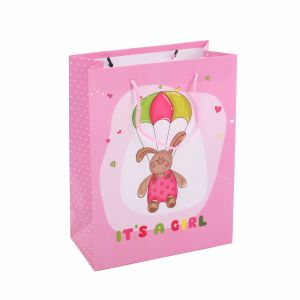 210g White Card Custom Cheap Made Wholesale Promotional Paper Bag pictures & photos