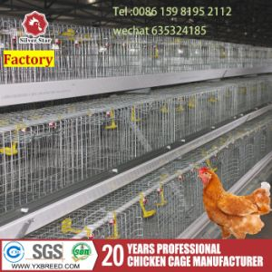 Wire Mesh Bird Cage Automatic Poultry Farms Battery Farm Machinery pictures & photos