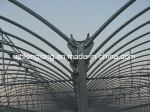 Special Design Steel Structure for EU Type pictures & photos