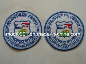 Iron on Embroidery 3D Embossed Embroidery Shoe Badge Embroidery Logo- Garment Accessory pictures & photos