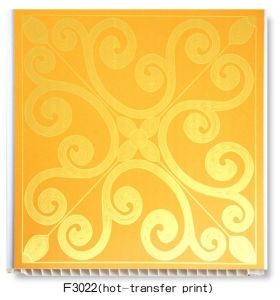 PVC Panel (hot transfer - F3022) pictures & photos