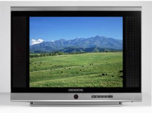 25 Inch TV (CFJ-20)