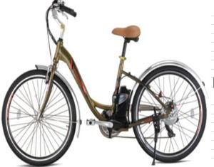 250W Brushless Assistant Electric Bicycle (YXEB-L2606)