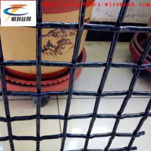 82A High Carbon Crimped Wire Mesh pictures & photos