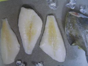 Yellow Fin Sole