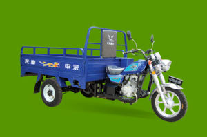 Halley Style Motor Tricycle - 175cc (ZS110ZH-BM)