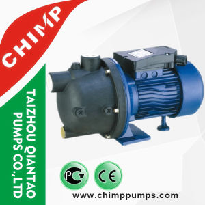 1.0HP 220V PPO Plastic Pump Body Garden Jet Water Pump for Clean Water for Home Use pictures & photos