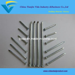 Galvanized Steel Iron Nails pictures & photos