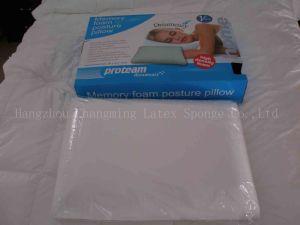 Memory Foam Traditional Pillow (PU101)