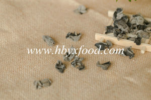 Within 2.5cm Dried Black Fungus Dehydrated Vegetable pictures & photos