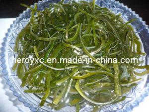 Dried Shredded Seaweed (sea kale, laminaria japonica, kelp, sea tangle)
