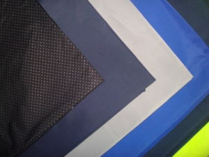 Functional Polyester Sport Fabric for Outdoor pictures & photos