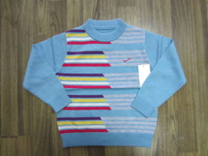 Children′s Sweater -ch1102