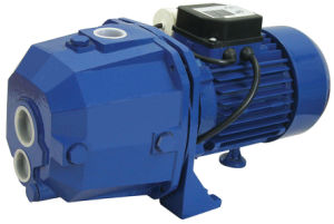 Deep Water Self-Priming Pump (CPM158) pictures & photos