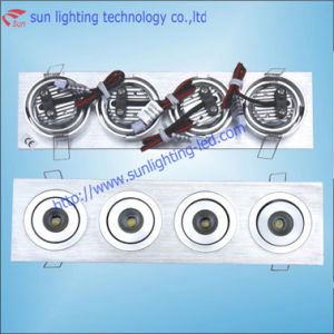 LED Recessed Down Light (SL-DL04-W)