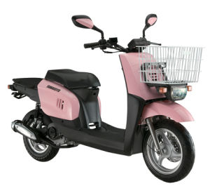 Gas Scooter (HL50QT-46)