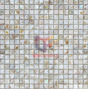 Colorful Natural Shell Mosaic (CFP081) pictures & photos