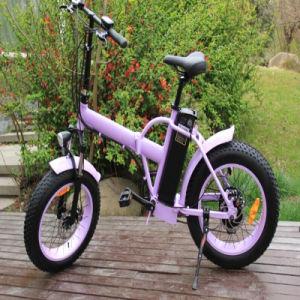 Fat Tire Folding E Bikes on Sales pictures & photos