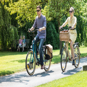 26inch 250W 36V City Electric Bicycle pictures & photos