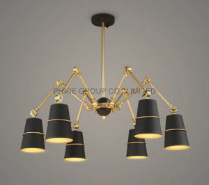 Modern Metal Fixture Top Quality Interior Pendant Lamp for Reading pictures & photos