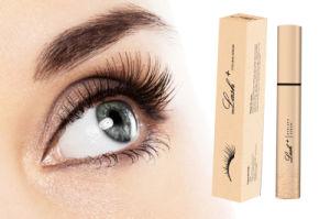 Natural Herbal Eyelash Serum on Hot Sale pictures & photos