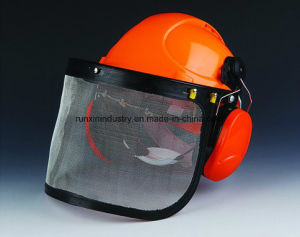 3 in 1 Safety Helmet Kit F003 pictures & photos