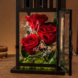Promotion Flower Gift for Valentine Birthday Christmas pictures & photos