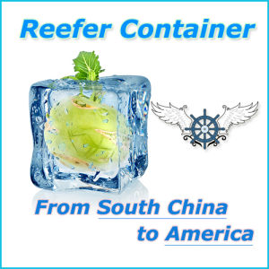 Reefer Container by Sea Freight Shipping From China to America pictures & photos