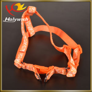 Promotion Dog Leash and Dog Collar with Custom Logo pictures & photos