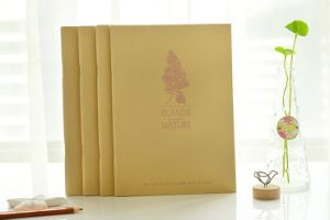 Craft Paper Staple Binding pictures & photos