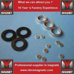 Strong Rare Earth N35 N40 N45 N48 N50 N52 NdFeB Ring Neodymium Magnet pictures & photos