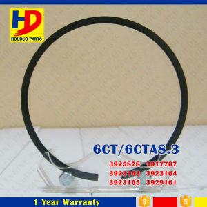6CT 6CT8.3 Engine Piston Ring for Cummins Excavator Parts (3925878 3917707) pictures & photos