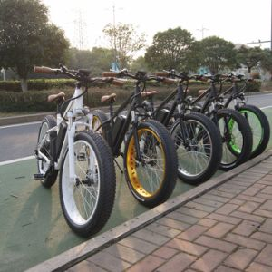 48V 1000W Brushless Gearless Electric Bike with Fat Tire pictures & photos