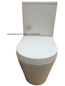 Two Piece Ceramic Toilet Washdown Toilet Water Closet Wc 1088d Rimless pictures & photos