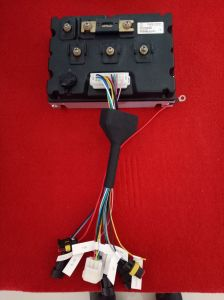 3kw BLDC Motor/ Electric Motorcycle Conversion Kit/Power, Efficient and Reliable pictures & photos
