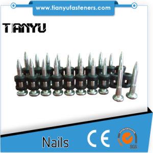 Mechanical Galvanizing Gas Concrete Nails pictures & photos