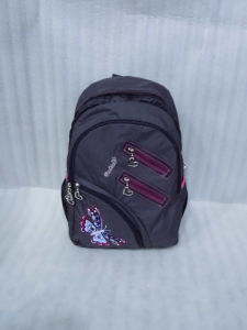 Boys/Students Shoulder Backpack Bags for School pictures & photos