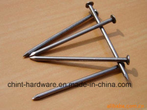 High Quality Polished Common Nail/ Common Wire Nails pictures & photos
