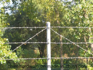 2 Strands 4 Points Barbed Wire Fencing/ PVC Coated Barbed Wire Coil pictures & photos