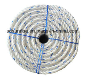 PP Danline Rope White with Aqua Blue pictures & photos