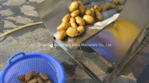 Mstp-1000 Commercial Stainless Steel Potato Peeling Machine, Melon Peeler, Carrot Taro Skin Peeler pictures & photos