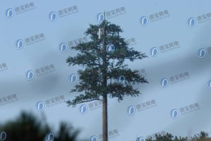 Telecommunication Camouflaged Tree Tower pictures & photos