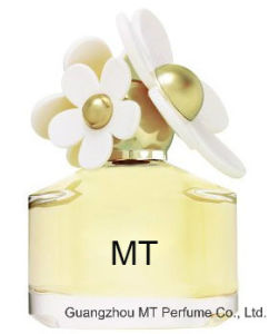 Mt Designer Perfume with Brand Fragrance Oil in 1-1 Quality pictures & photos