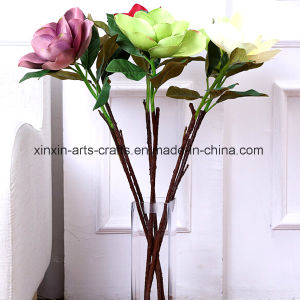 Factory Wholesale Real Touch Artificial Flowers Magnolia Flowers pictures & photos
